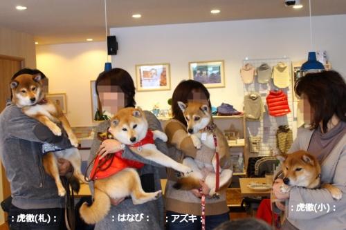 IMG_2311_AZUKI.jpg