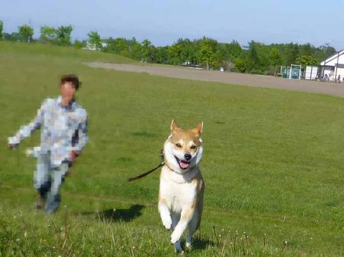P1010255+AZUKI.jpg