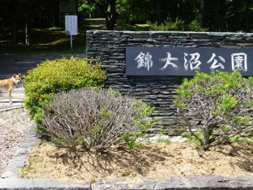 P1030047+AZUKI.jpg