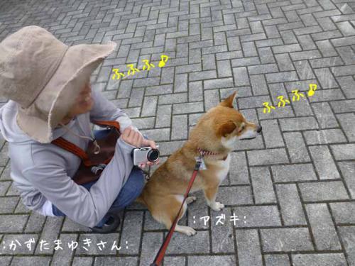 P1030589+AZUKI.jpg