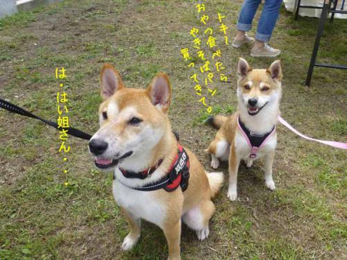 P1050128+AZUKII.jpg
