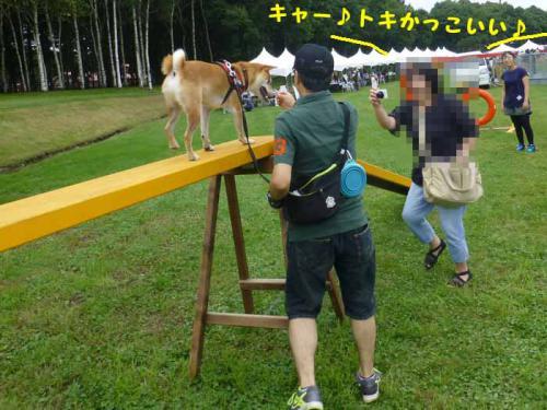 P1050440+AZUKI.jpg