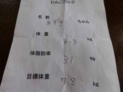 P1050747+AZUKI.jpg