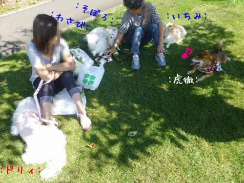 P1060482+AZUKI.jpg