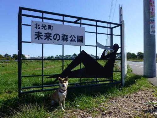 P1070733+AZUKI.jpg