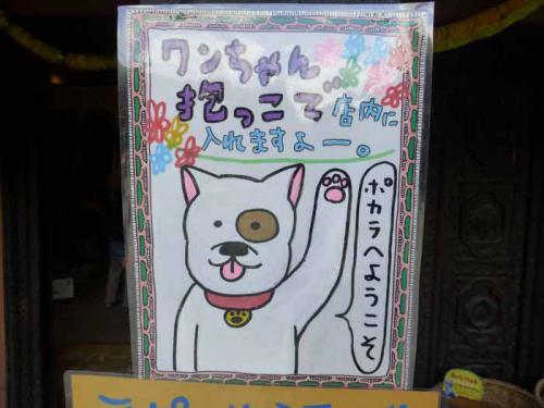 P1080655+AZUKI.jpg