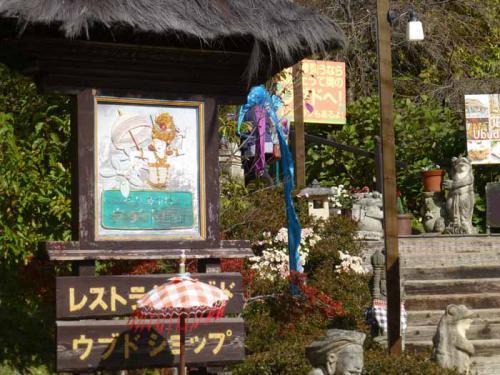P1080680+AZUKI.jpg