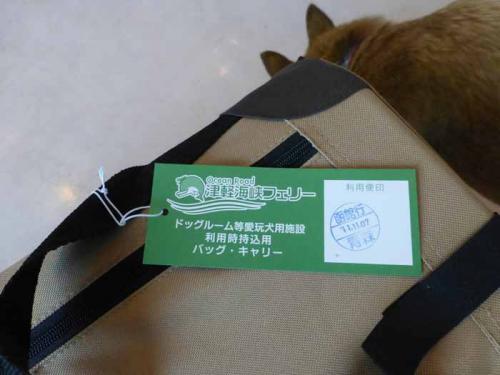 P1090612+AZUKI.jpg
