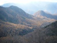 茶臼山方面