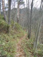 登山口から1