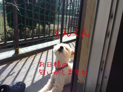 fc2blog_2013031922462879f.jpg