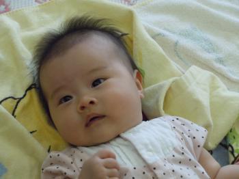 DSCN4746_convert_20120911151031.jpg