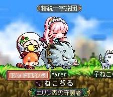 Maple121230_142928.jpg