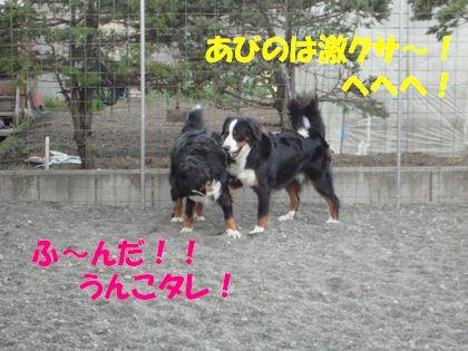 DSC01652.jpg