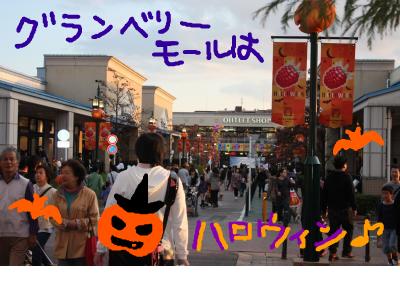 snap_baron20101214_2012100233410.jpg