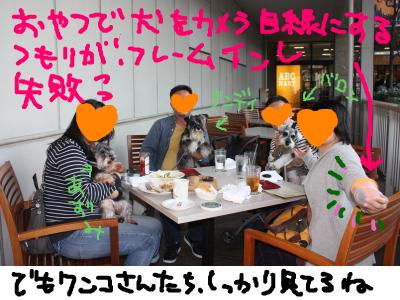 snap_baron20101214_201210102128.jpg