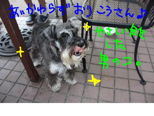 snap_baron20101214_201210105548.jpg
