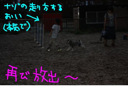 snap_baron20101214_2012102112945.jpg