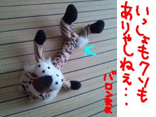 snap_baron20101214_2012102131452.jpg
