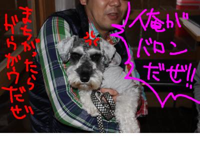 snap_baron20101214_2012110112212.jpg