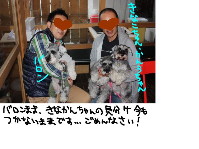 snap_baron20101214_201211012734.jpg