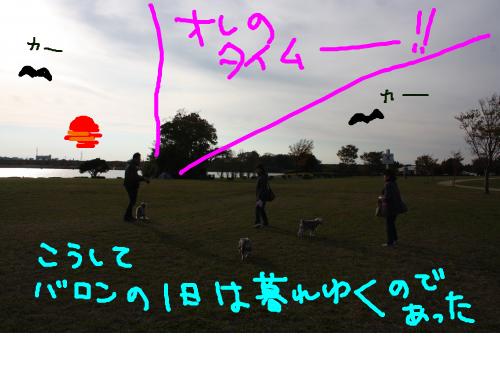 snap_baron20101214_2012110215958.jpg