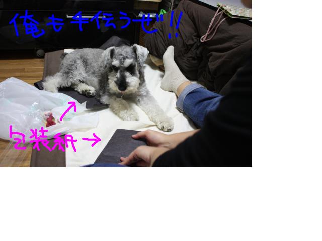 snap_baron20101214_2012111235918.jpg