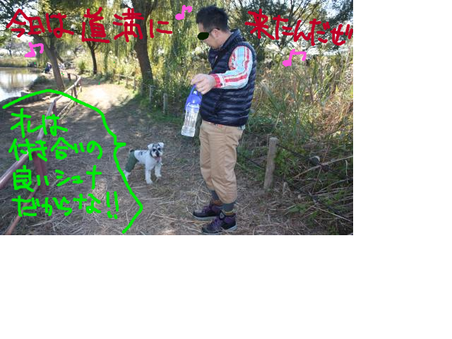 snap_baron20101214_2012114222359.jpg