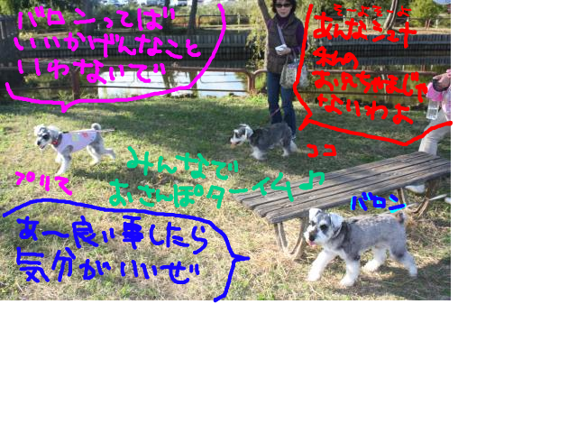 snap_baron20101214_2012114232121.jpg