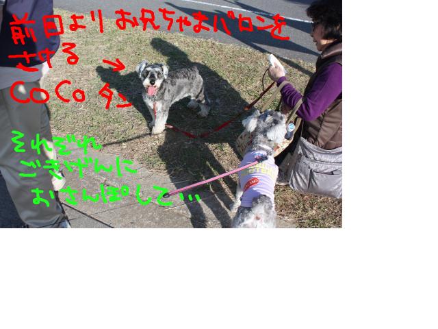 snap_baron20101214_2012114233019.jpg
