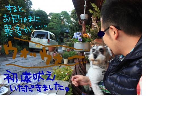 snap_baron20101214_2012114235620.jpg
