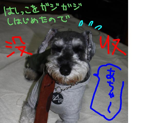 snap_baron20101214_201211503744.jpg