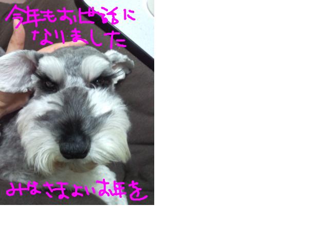 snap_baron20101214_2012126231611.jpg