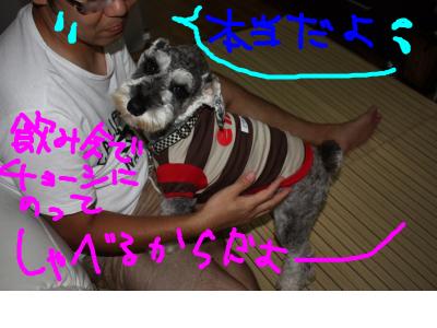 snap_baron20101214_20129121103.jpg