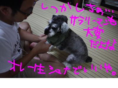snap_baron20101214_201291213044.jpg