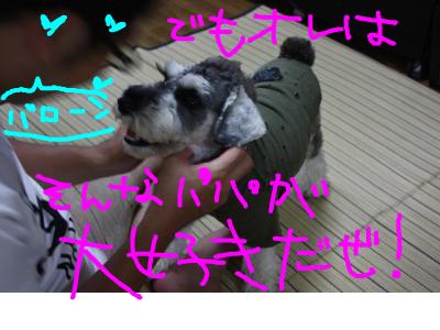 snap_baron20101214_201291214912.jpg