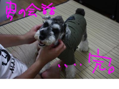 snap_baron20101214_201291215153.jpg