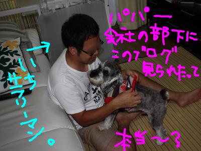snap_baron20101214_20129121619.jpg