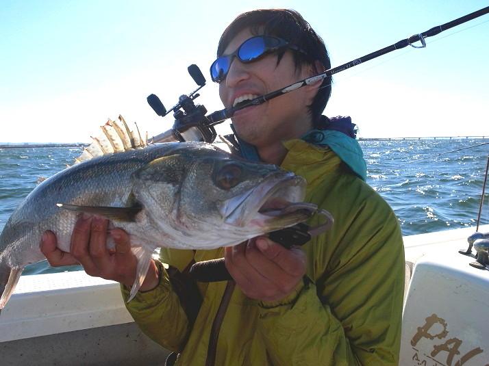 ほんとよく釣れる