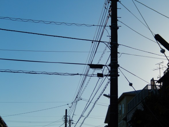 びぃなむ301-01