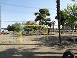 DSC01147_R.jpg