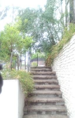 通路の写真