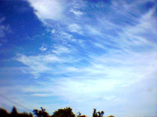 Photo002.jpg