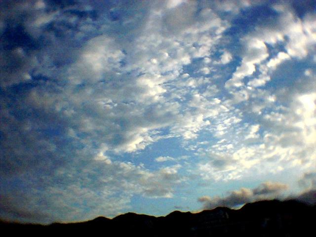 Photo011.jpg