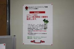 野菜_convert_20121206163014
