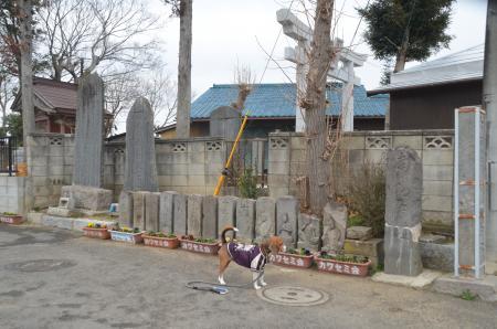 20140202いんざい七福神⑥04