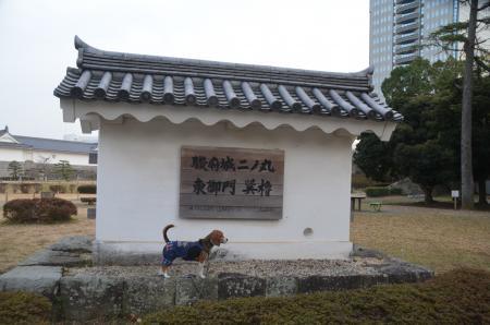 20140201駿府城址20