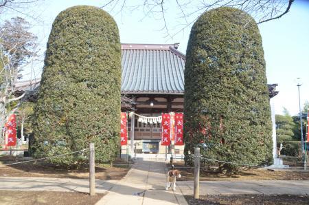 20140206しろい七福神①延命寺08