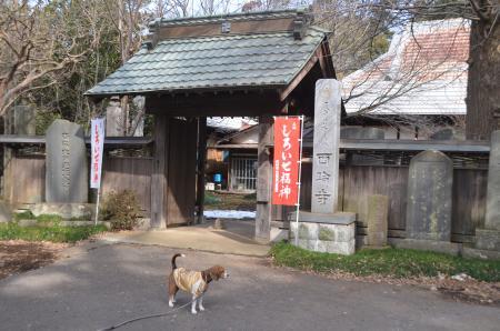 20140206しろい七福神②西輪寺03