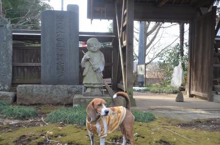 20140206しろい七福神②西輪寺09